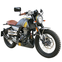 Defensa motor Mondial HPS 125